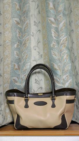 hand-bag_20121210_001